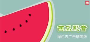界面简洁功能强大宅男新福音-西瓜影音【绿色优化版】